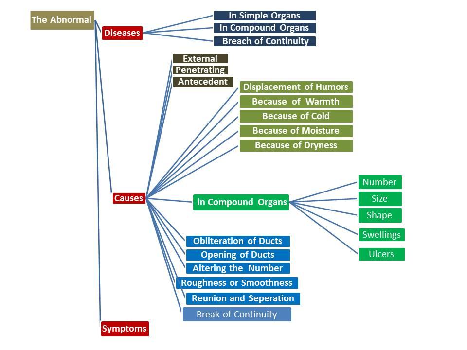 Image Result For Islamic Scholarsa