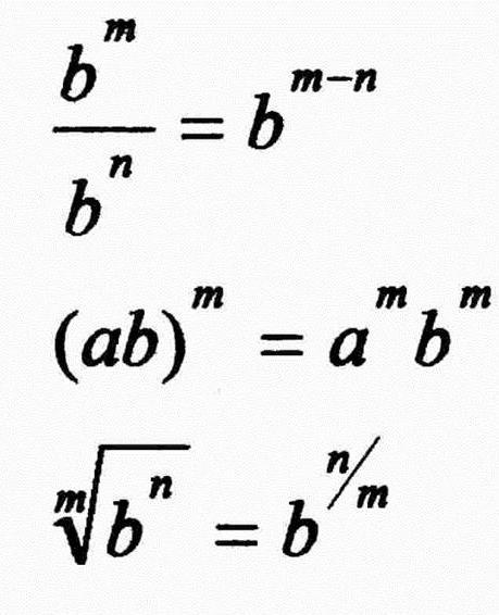 Logical Necessities in Mixed Equations: 'Abd Al-Hamîd Ibn