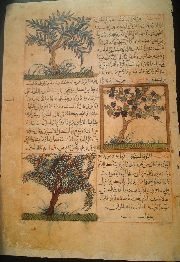 الطباعة في العالم الإسلامي