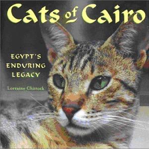 Cats in Islamic Culture « Muslim Heritage