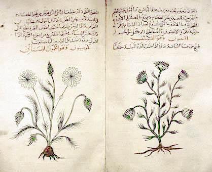 Al-Dinawari