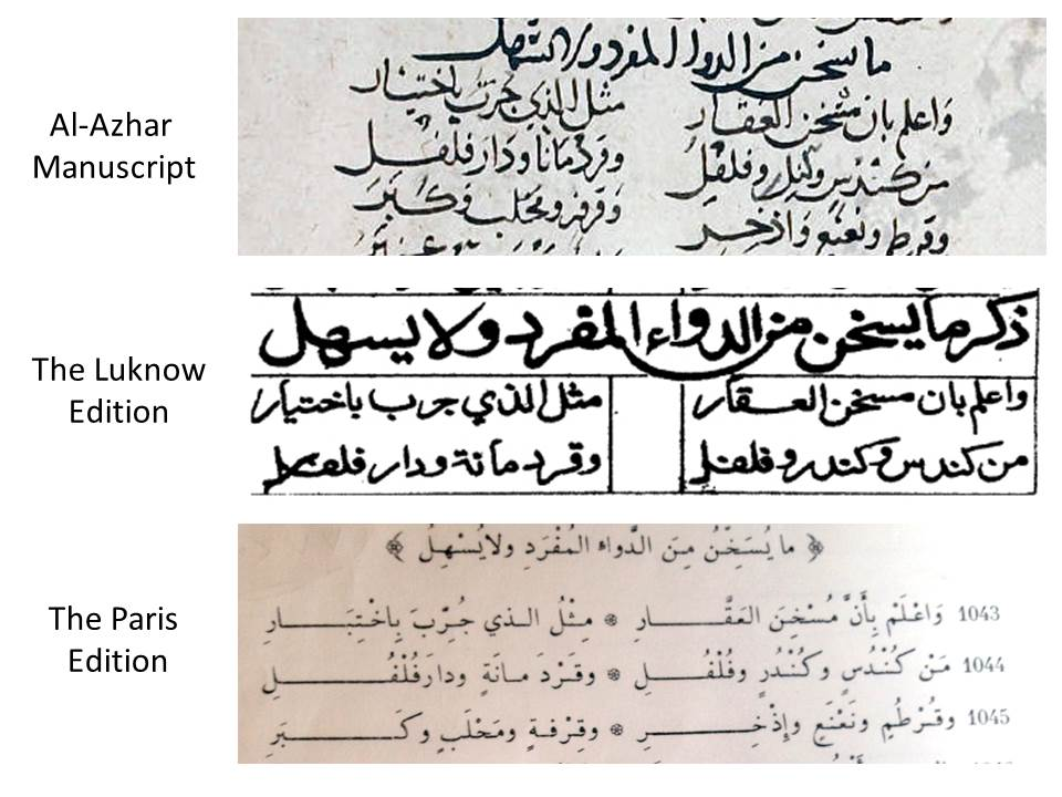 The role of Ibn Sina (Avicenna)'s Medical Poem in the transmission of medical knowledge to medieval Europe