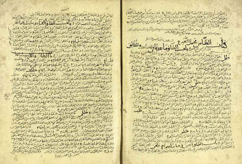 Manuscript Review The Law of Language, by Ibn Faris