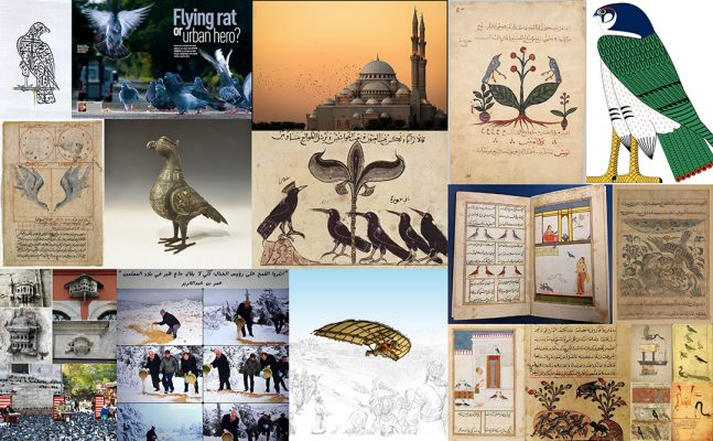 A Sanctuary for Birds: Muslim Civilisation « Muslim Heritage