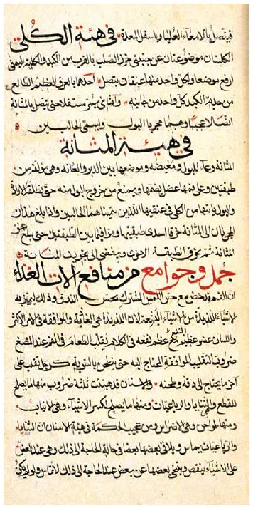 Introduction to the History of Medieval Islamic Medicine; Human Anatomy and Physiology in the Medieval Islamic Era
